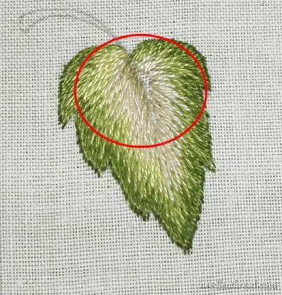 Long & Short Stitch Shading Lesson 7: More Complex Leaf