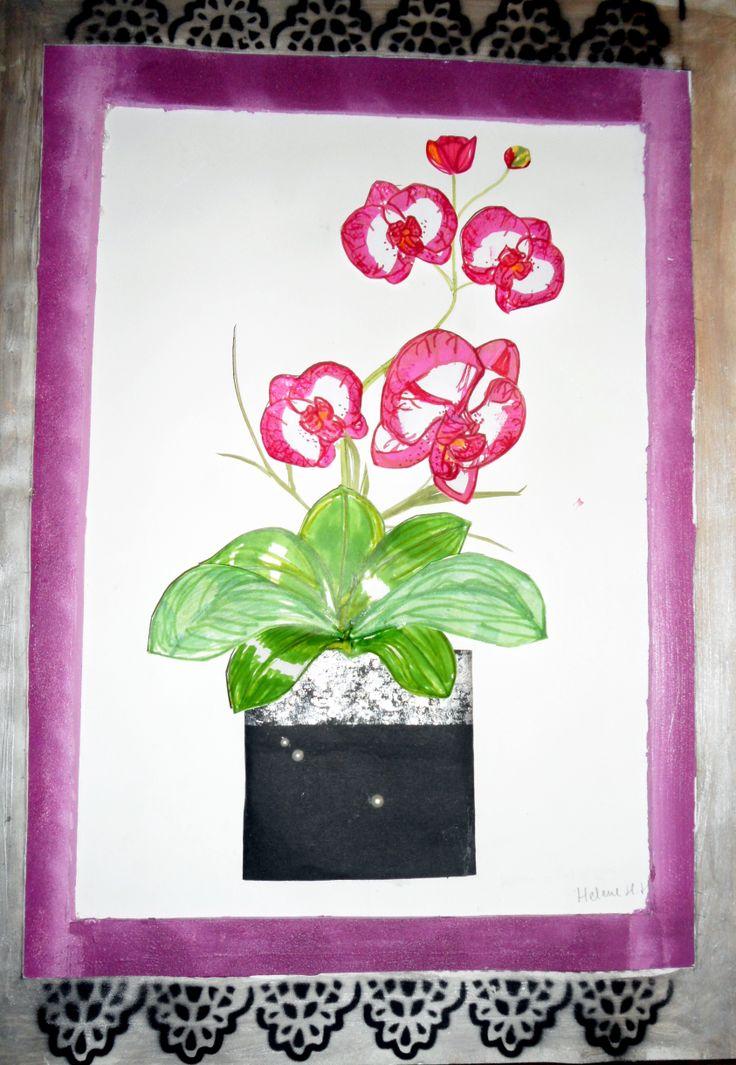 Orchid flower in frame Helene H.Hagen