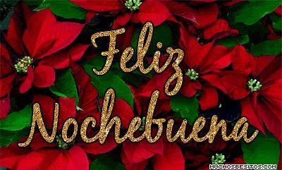 Solo yo: Hoy es Nochebuena y mañana Navidad....