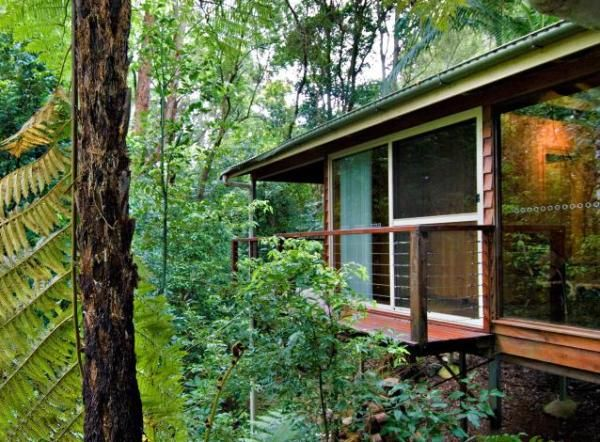 102 best Treehouses around the world images on Pinterest ...