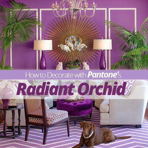 Top 28 Radiant Orchid Home Decor 30 Best Pantone