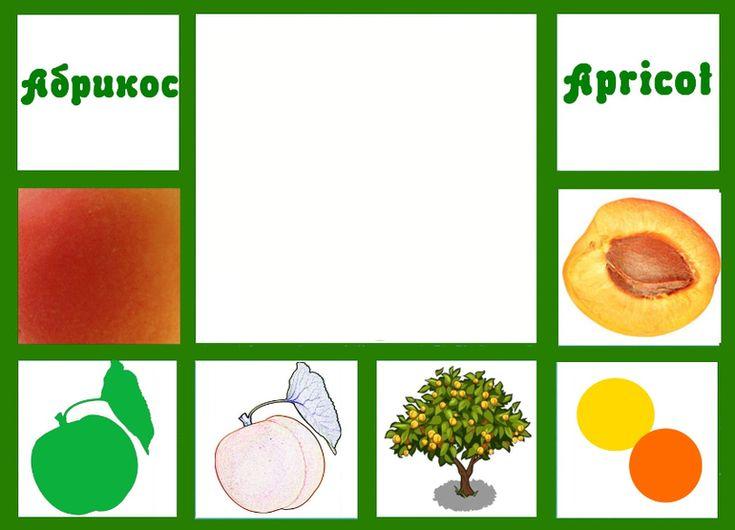 """Игра-лото:"""" Ягоды и фрукты"""" - Babyblog.ru"""