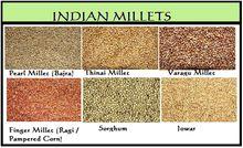 Varieties of millet grown in India