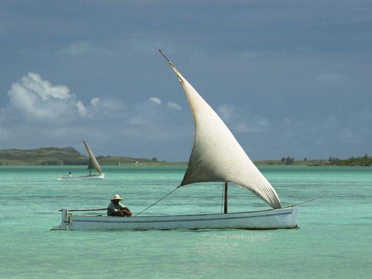 Connaissez-vous l'île Rodrigues ? Au cœur de l'Océan Indien, cette terre…