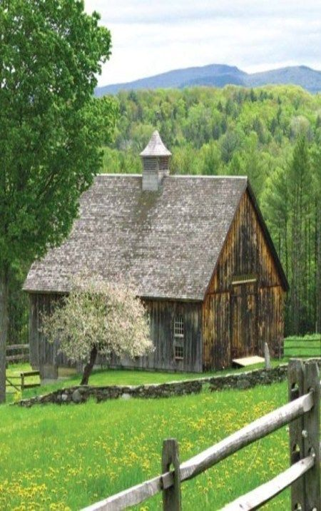 Barn With Beautiful White Blooming Tree