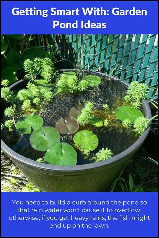 Advice For Keeping Your Pond Garden Looking Great Easy Garden