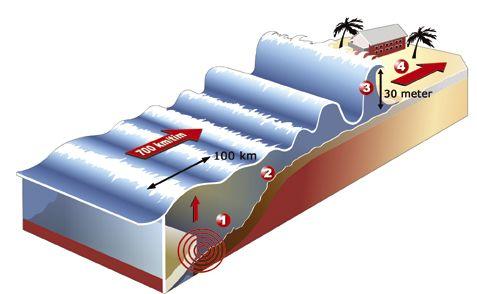 """Hur uppstår en Tsunami! Boken """"Paradiset som försvann"""" nyhetsgrafik infografik"""