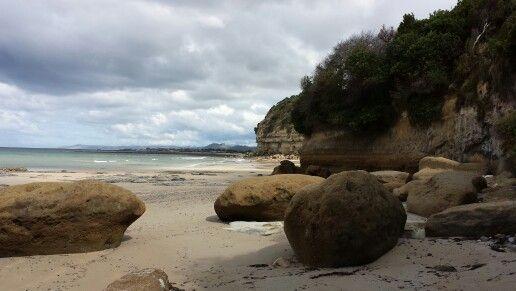 Fossil Bluff, Wynyard, Tasmania