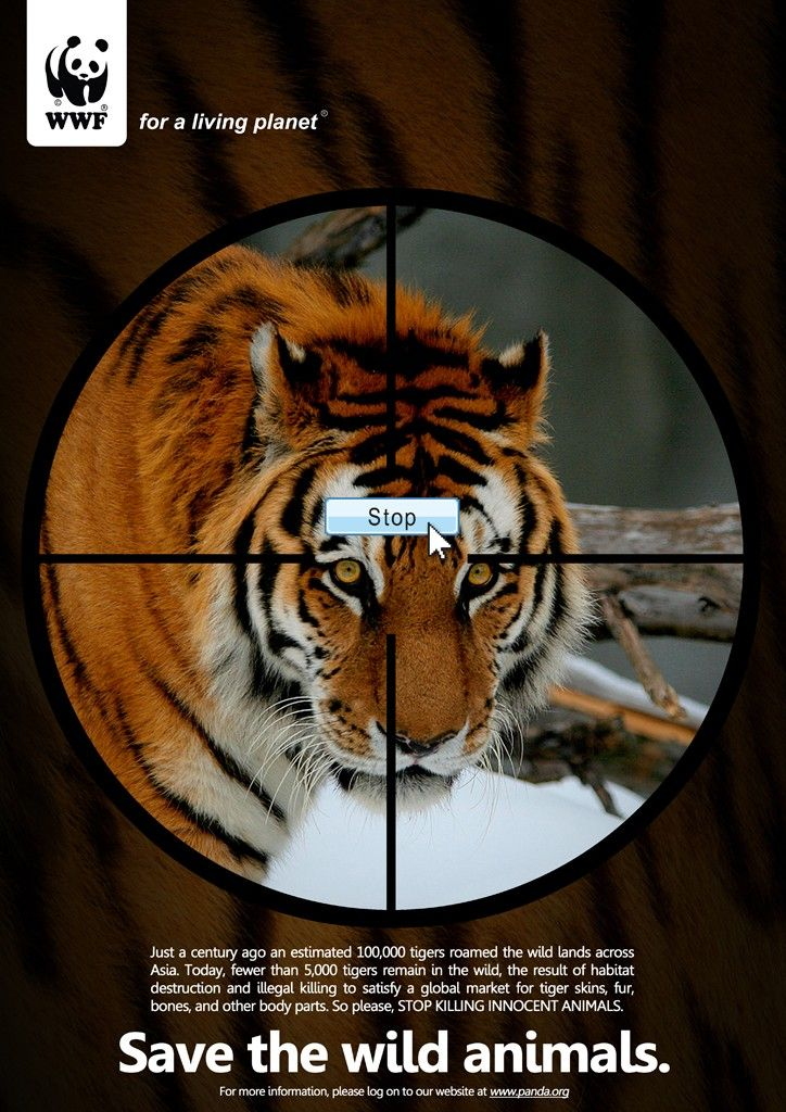 Save the wild animals. Tiger WWF Save the