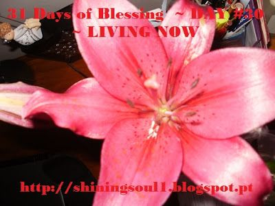 ShiningSoul: Day #30 ~ 31 Days of Blessing: LIVING NOW /  Dia #...