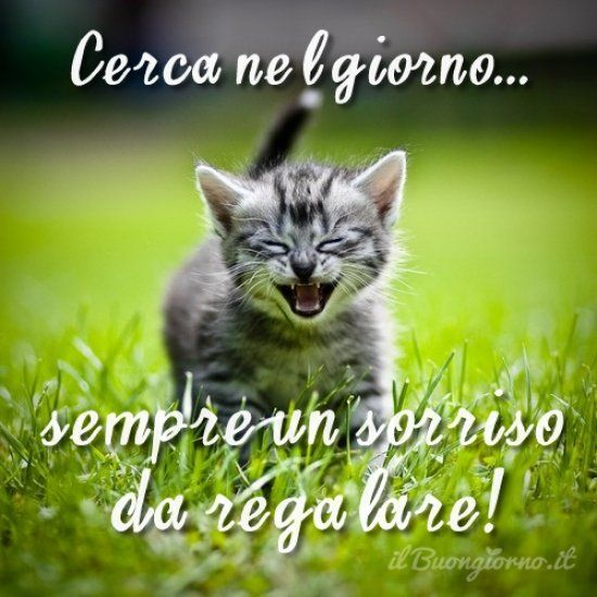 Sorridi al nuovo giorno!
