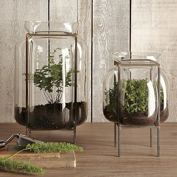 West Elm Glass Terrarium With Metal Stand