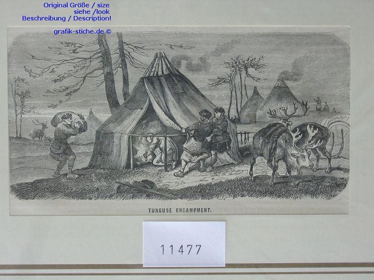 Russland-Russia-Russian-Rossiya-Rossiyskaya--TUNGUSE-SIBIRIEN-Ren-Reindeer - Engravings - Stiche - Lithographien - Alte Grafik - Graphik- W....