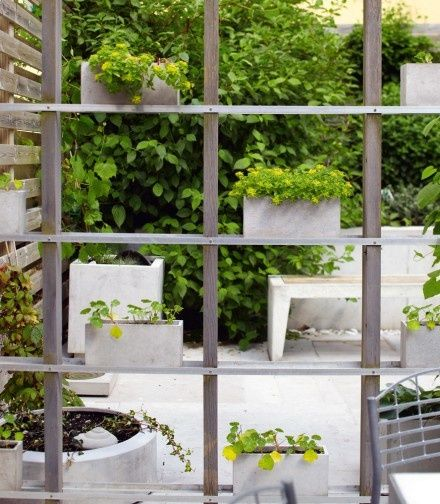 trellis with shelving