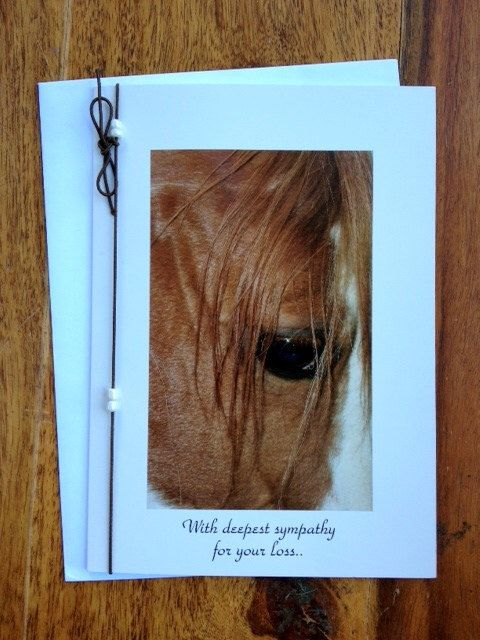 4 Horse Sympathy Greeting Cards-Photo Notecard-Horse Photography-Horse Cards-Sympathy-Horse Sympathy-Pet Sympathy Card by SilverJaxDesigns on Etsy https://www.etsy.com/listing/200088889/4-horse-sympathy-greeting-cards-photo