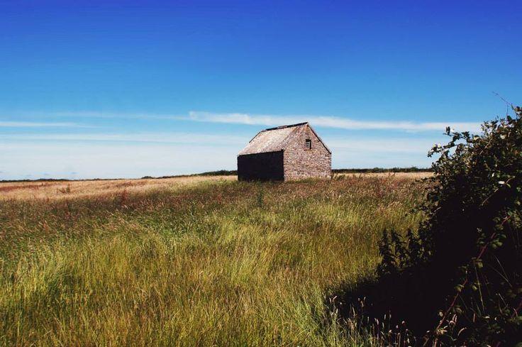#Wales #CaldeyIsland #Photography #Travel
