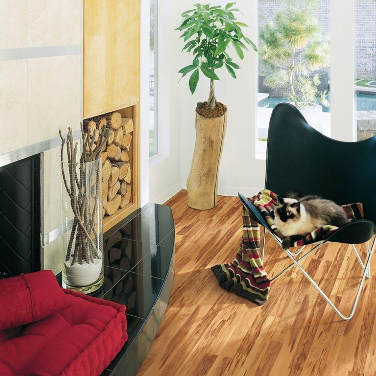 boathouse pine laminate flooring sample 24 best furniture flexibility images on pinterest flexibility