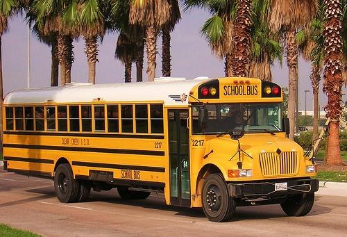 Yellow School Buses <3