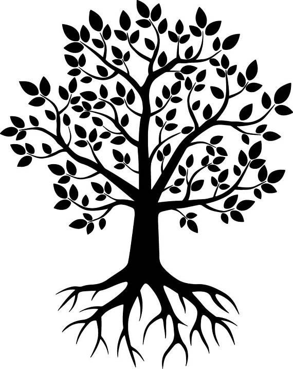 Tree Svg Tree With Roots Silhouette Png Png Roots Silhouette Svg Tree Tree Svg Silhouette Png Family Tree Mural