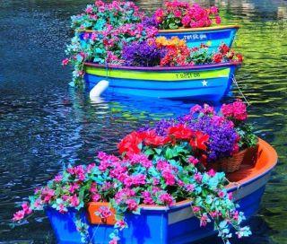 garden boats