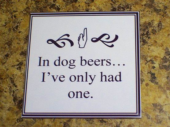 in dog beers... i've only had one: Dogs Beer, Laughing, Quotes, Dogs Years, Giggl, Funny Stuff, Humor, Dogs Lovers, Smile