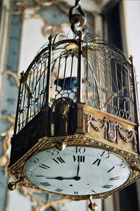 This Is Incredible! A Vintage Bird Cage Decorated With A Clock Placed  Underneath, Such A Cool Interior Decoration. Time To Change The Bird Cage  Paper!
