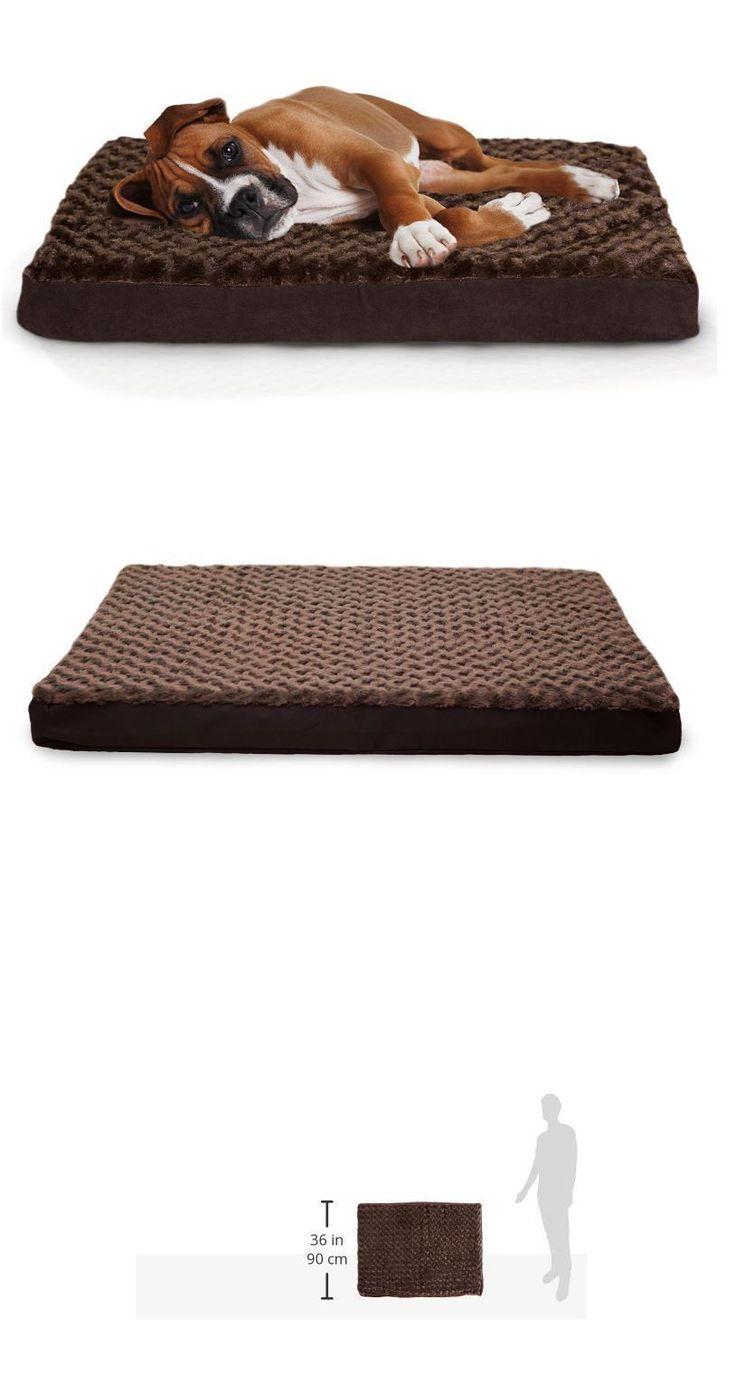 Beds 20744: Furhaven Pet Deluxe Orthopedic Dog Bed Cat Mattress Large Chocolate Plush New BUY IT NOW ONLY: $46.95