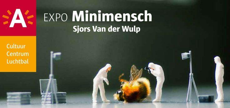 www.sjorsvanderwulp.nl