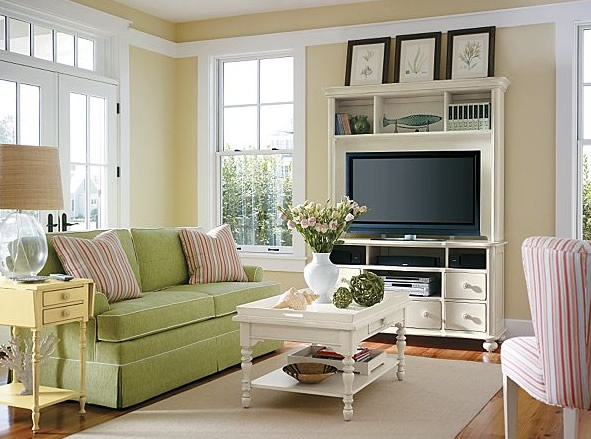 Green Couch Never Would Have Thought Of That Small Living RoomsLiving Room IdeasFamily