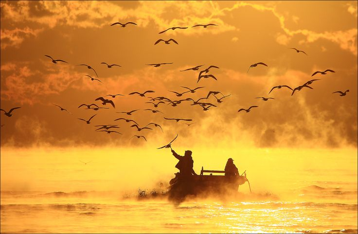 Sail back to port by keehwan Kim, via 500px