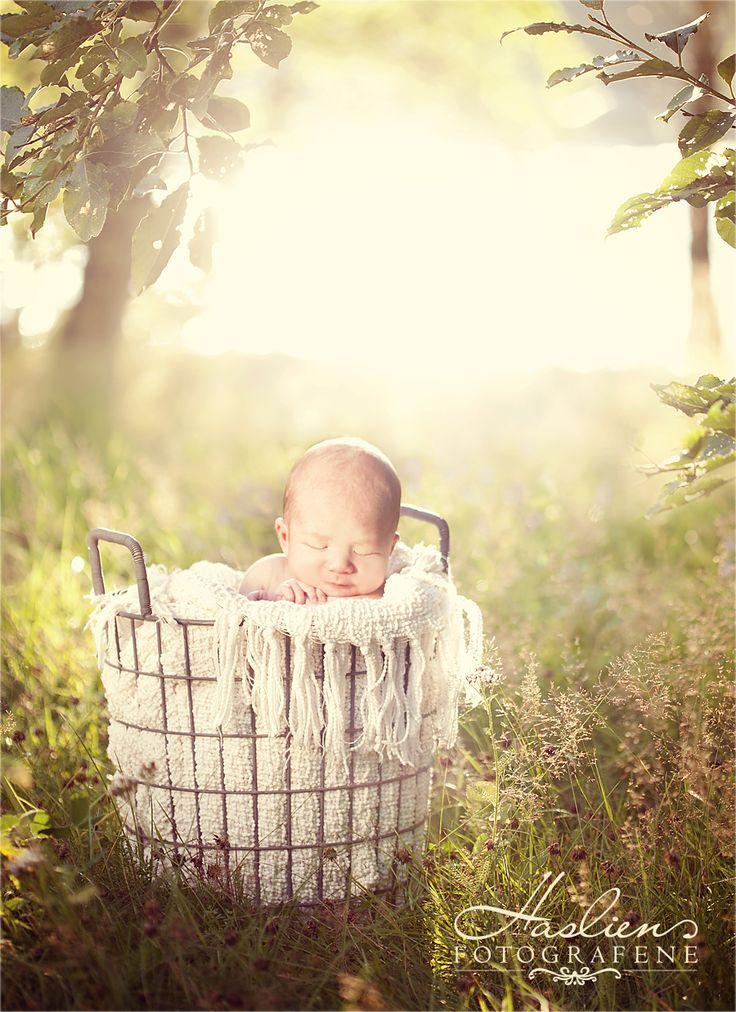 Sollyset forsterkes ved at det speiler seg i Glomma som ligger 10 meter bak kurven som barnet ligger i - det gir oss masse motlys.