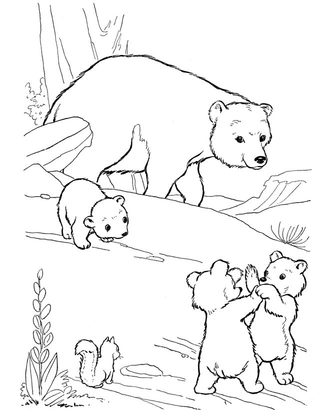 Wild Animal Coloring Pages   Playful bear cubs Coloring Page and Kids Activity sheet   HonkingDonkey