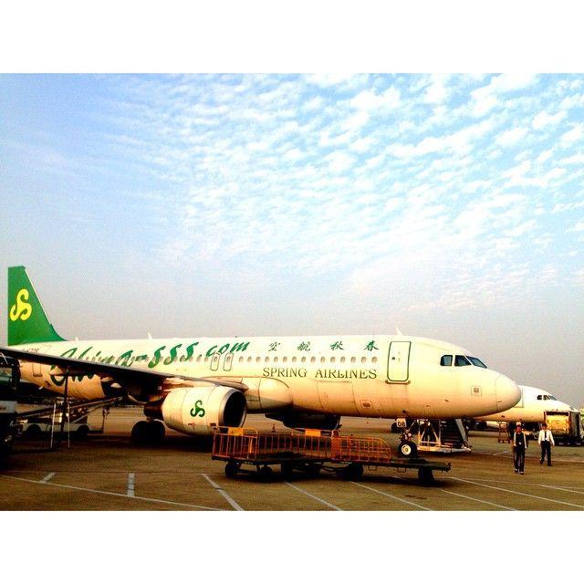 aldo shoes aruba airlines wiki
