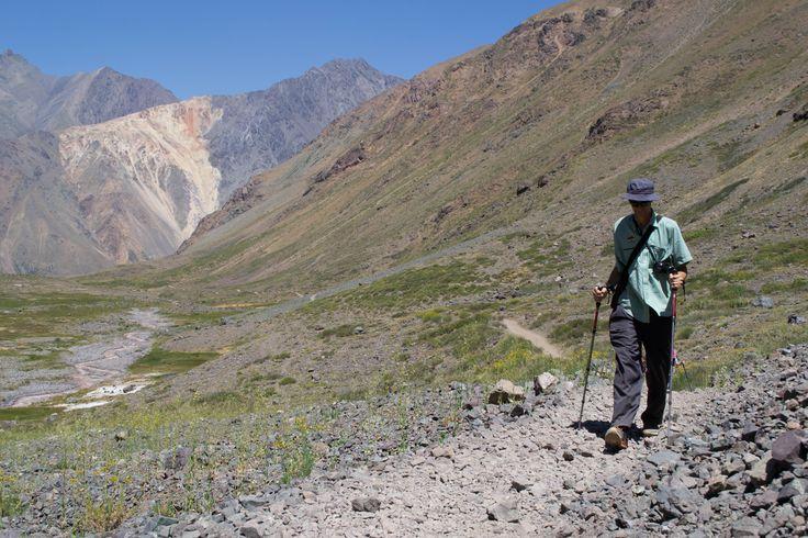Caminando entre la Yerba Blanca