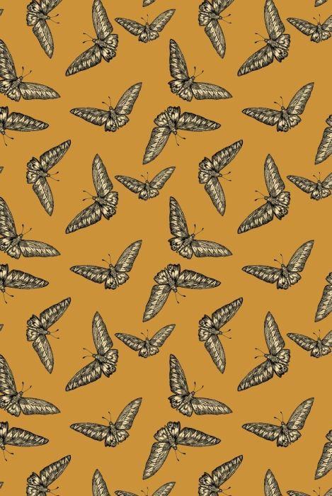 Timorous Beasties Wallcoverings - Devine Moth