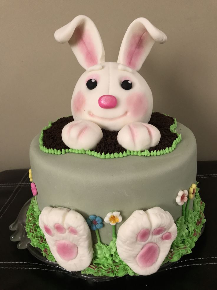 Bunny cake for my 2 year old granddaughter.