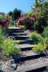 How to Make Steps in a Garden Slope Faith McQuinn