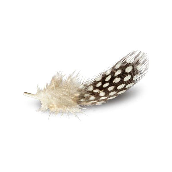 Надежда Хан — альбом «Скрап наборы / Винтаж / Vintage Farm» на... ❤ liked on Polyvore featuring feathers