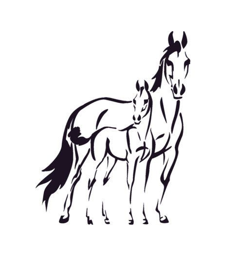 Cheval Decal poney mur autocollant Teen filles par aluckyhorseshoe