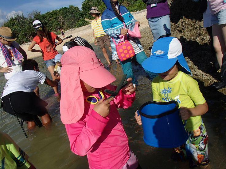 地域の子どもたちと英語で海洋教育~! - http://www.natural-blue.net/blog/info_7569.html