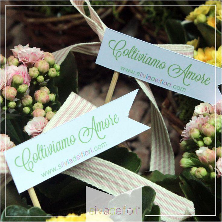 Da noi si Coltiva solo Amore!!! Decorazioni floreali-Interpretazioni floreali
