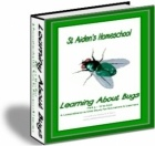 215 pages - includes worksheets, games, teacher resources  - Learning About Bugs, Part 3, N to Z - St Aiden's Homeschool | Animals & Insects | @CurrClick_Leah