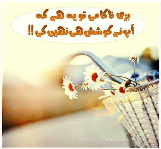 1000 images about urdu poetry and quotes on pinterest
