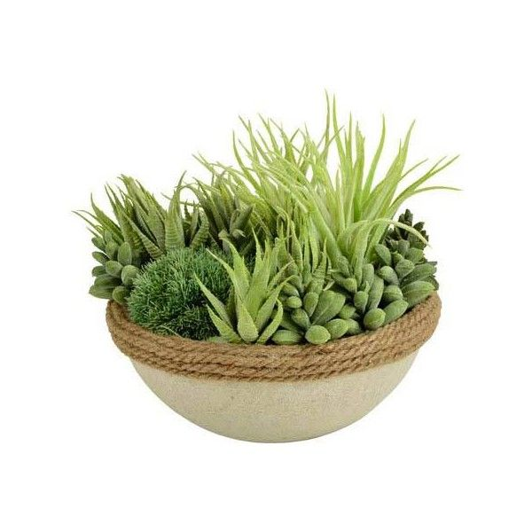 Picnic at Ascot Artificial Succulent - Green found on Polyvore featuring home, home decor, floral decor, green, succulent planter, faux planters, green home decor, green planters and artificial arrangement