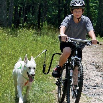 Pasear a tu perro en bici, no tiene precio  Fab.com | Bike Dog Exerciser