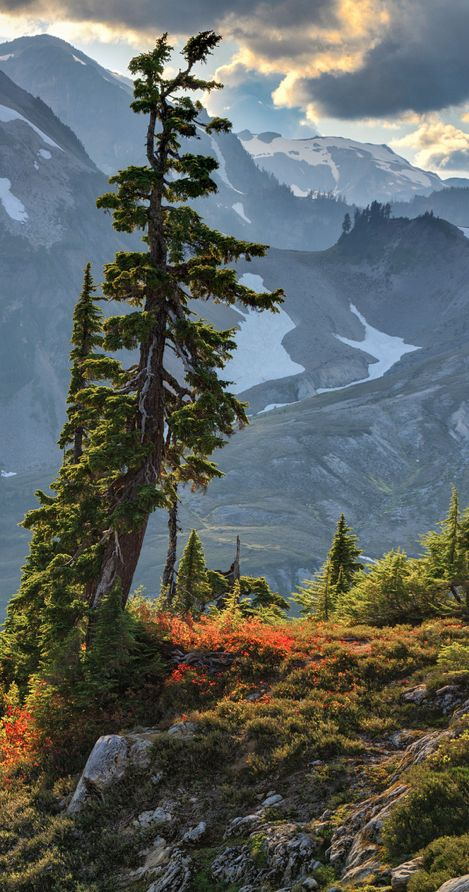 A mountain scene from Artist Point in the Mt. Baker Wilderness area near the Mt. Baker ski area ~ North Cascades, Washington • photo: Michael Riffle on Flickr