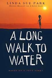 Awesome class activity to go with the book, A Long Walk to Water by Linda Sue Park.