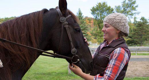 horseback summer 2
