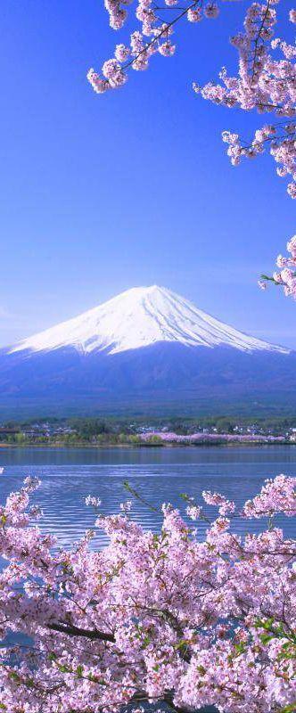 Lake Kawaguchi & Mount Fuji, Shizuoka, Japan