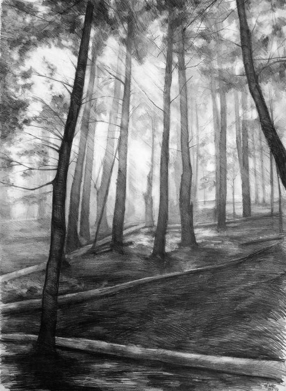 dark forest ORIGINAL drawing by Katarzyna Kmiecik / pencil sketch, original landscape, pine trees drawing, peaceful forest, atmospheric art